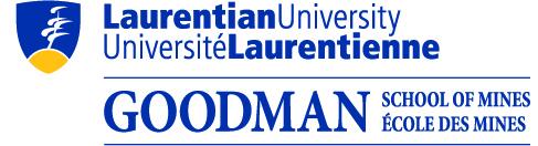 GSM_Logo