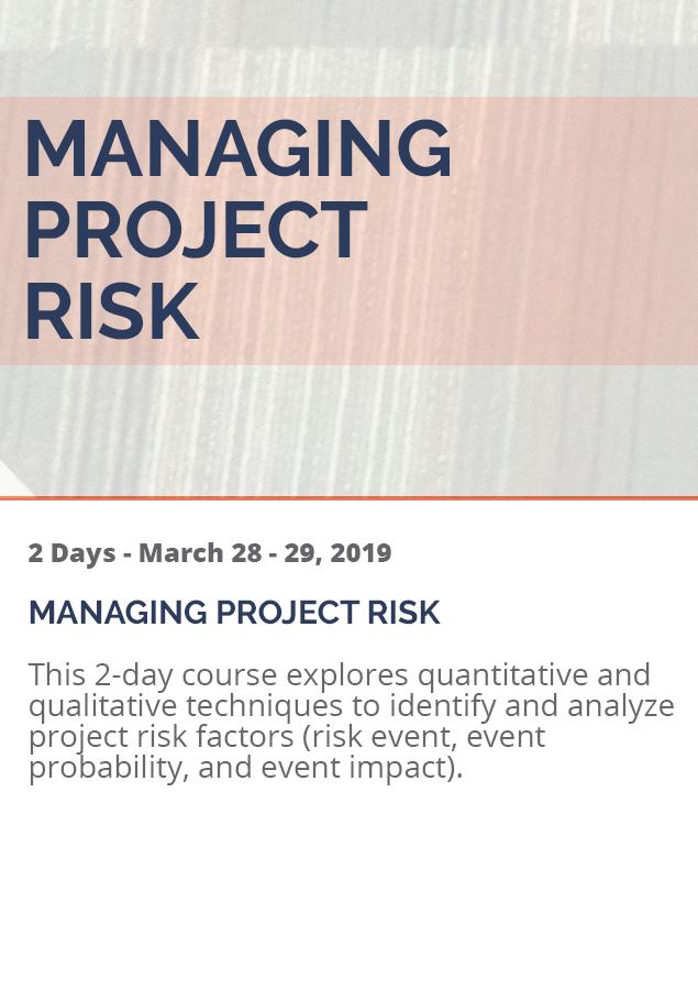 ManagingProjectRisk_2019
